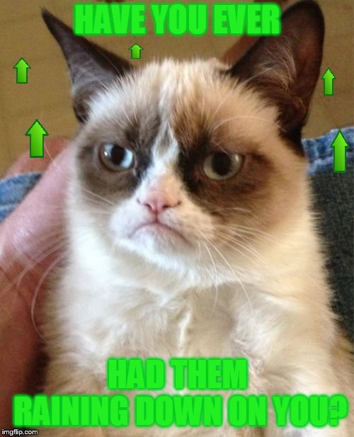 Grumpy Cat Meme | HAVE YOU EVER HAD THEM RAINING DOWN ON YOU? | image tagged in memes,grumpy cat | made w/ Imgflip meme maker