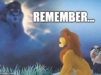 Lion King Mufasa in the sky | REMEMBER... | image tagged in lion king mufasa in the sky | made w/ Imgflip meme maker