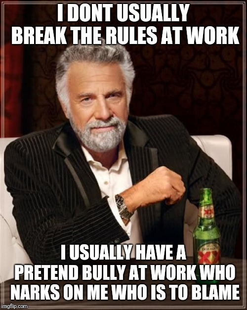 The Most Interesting Man In The World Meme | I DONT USUALLY BREAK THE RULES AT WORK I USUALLY HAVE A PRETEND BULLY AT WORK WHO NARKS ON ME WHO IS TO BLAME | image tagged in memes,the most interesting man in the world | made w/ Imgflip meme maker