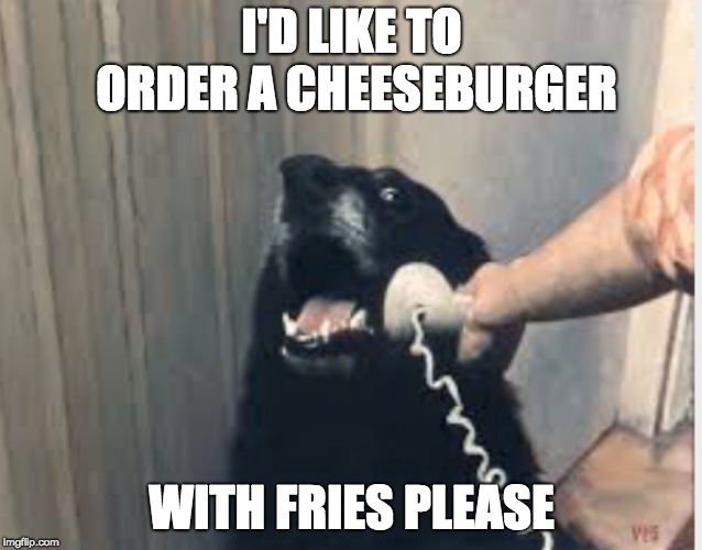 Hello yes this is dog | I'D LIKE TO ORDER A CHEESEBURGER WITH FRIES PLEASE | image tagged in hello yes this is dog | made w/ Imgflip meme maker