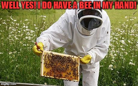 bee keeper | WELL YES! I DO HAVE A BEE IN MY HAND! | image tagged in bee keeper | made w/ Imgflip meme maker