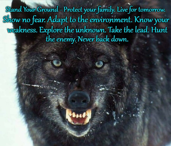 Wolf Saying Stand Your Ground | Stand Your Ground - Protect your family. Live for tomorrow. Show no fear. Adapt to the environment. Know your weakness. Explore the unknown. | image tagged in wolf,wolves,native american,native americans,tribe,indians | made w/ Imgflip meme maker