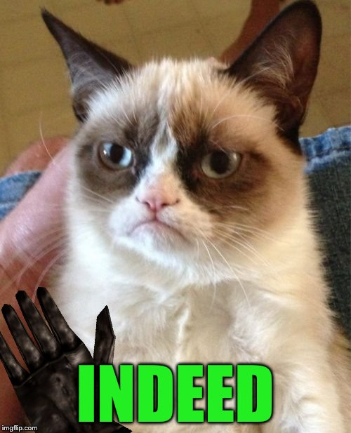 Grumpy Cat Meme | INDEED | image tagged in memes,grumpy cat | made w/ Imgflip meme maker