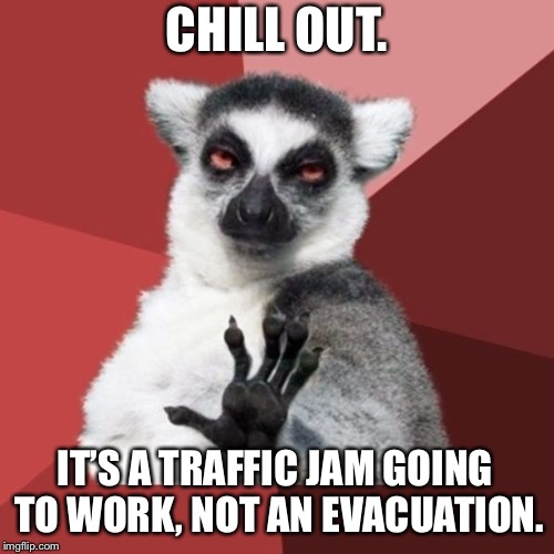 Driving to work is not a reason to be in hysteria | CHILL OUT. IT'S A TRAFFIC JAM GOING TO WORK, NOT AN EVACUATION. | image tagged in memes,chill out lemur,traffic jam,road rage,disaster,driving | made w/ Imgflip meme maker