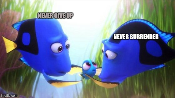 Life's A B_itch ! | NEVER GIVE UP NEVER SURRENDER | image tagged in memes,funny,animals,comics/cartoons | made w/ Imgflip meme maker