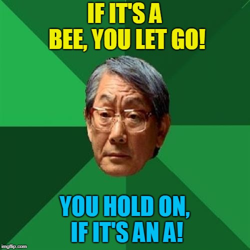 High Expectations Asian Father Meme | IF IT'S A BEE, YOU LET GO! YOU HOLD ON, IF IT'S AN A! | image tagged in memes,high expectations asian father | made w/ Imgflip meme maker