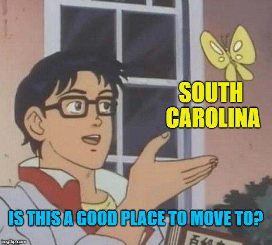 Is This A Pigeon Meme | SOUTH CAROLINA IS THIS A GOOD PLACE TO MOVE TO? | image tagged in memes,is this a pigeon | made w/ Imgflip meme maker