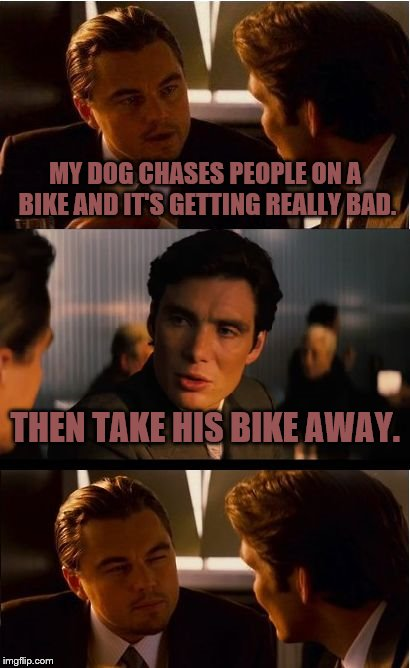 Inception Meme | MY DOG CHASES PEOPLE ON A BIKE AND IT'S GETTING REALLY BAD. THEN TAKE HIS BIKE AWAY. | image tagged in memes,inception | made w/ Imgflip meme maker