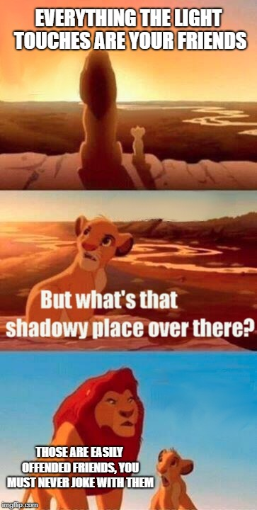 Simba Shadowy Place Meme | EVERYTHING THE LIGHT TOUCHES ARE YOUR FRIENDS THOSE ARE EASILY OFFENDED FRIENDS, YOU MUST NEVER JOKE WITH THEM | image tagged in memes,simba shadowy place | made w/ Imgflip meme maker