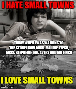 Small town life | I HATE SMALL TOWNS TODAY WHEN I WAS WALKING TO THE STORE I SAW MISS. MAUDIE, ZEEBO, MISS. STEPHENIE, MR. AVERY AND MR FINCH I LOVE SMALL TOW | image tagged in to kill a mockingbird | made w/ Imgflip meme maker