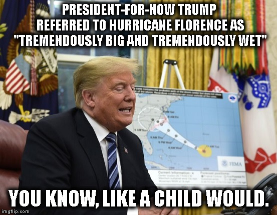 "President Retard | PRESIDENT-FOR-NOW TRUMP REFERRED TO HURRICANE FLORENCE AS ""TREMENDOUSLY BIG AND TREMENDOUSLY WET"" YOU KNOW, LIKE A CHILD WOULD. 