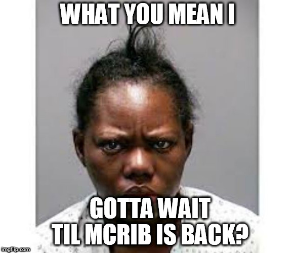 whatchu talkin bout willis? | WHAT YOU MEAN I GOTTA WAIT TIL MCRIB IS BACK? | image tagged in mcrib is,back,what,you,mean,wait | made w/ Imgflip meme maker