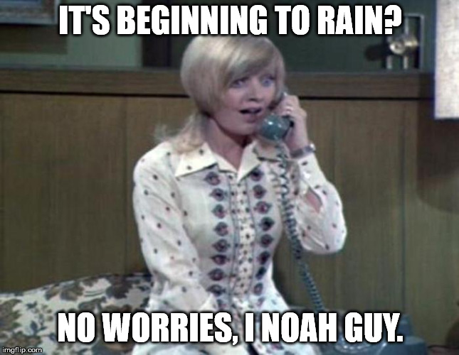 IT'S BEGINNING TO RAIN? NO WORRIES, I NOAH GUY. | image tagged in florence | made w/ Imgflip meme maker