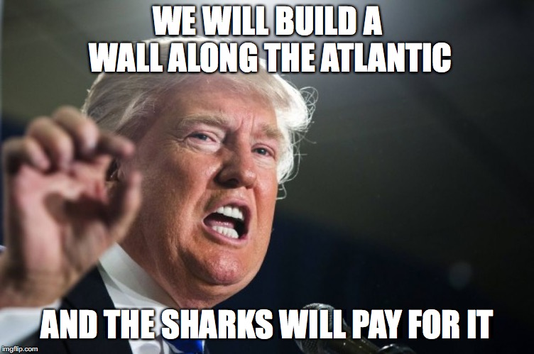donald trump | WE WILL BUILD A WALL ALONG THE ATLANTIC AND THE SHARKS WILL PAY FOR IT | image tagged in donald trump | made w/ Imgflip meme maker