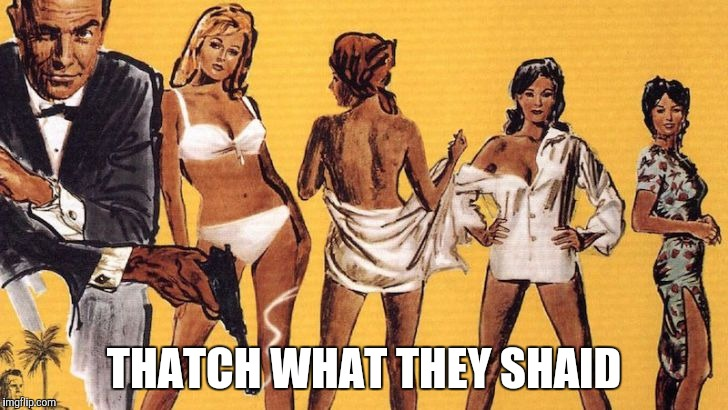 Bond girls | THATCH WHAT THEY SHAID | image tagged in bond girls | made w/ Imgflip meme maker
