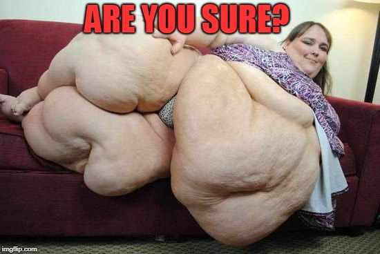 fat woman | ARE YOU SURE? | image tagged in fat woman | made w/ Imgflip meme maker