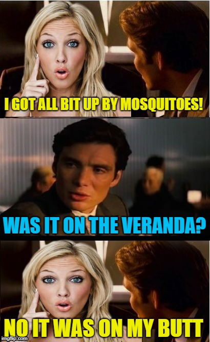 Blonde date | I GOT ALL BIT UP BY MOSQUITOES! WAS IT ON THE VERANDA? NO IT WAS ON MY BUTT | image tagged in funny memes,inception,dumb blonde,mosquitoes,mosquito attack | made w/ Imgflip meme maker