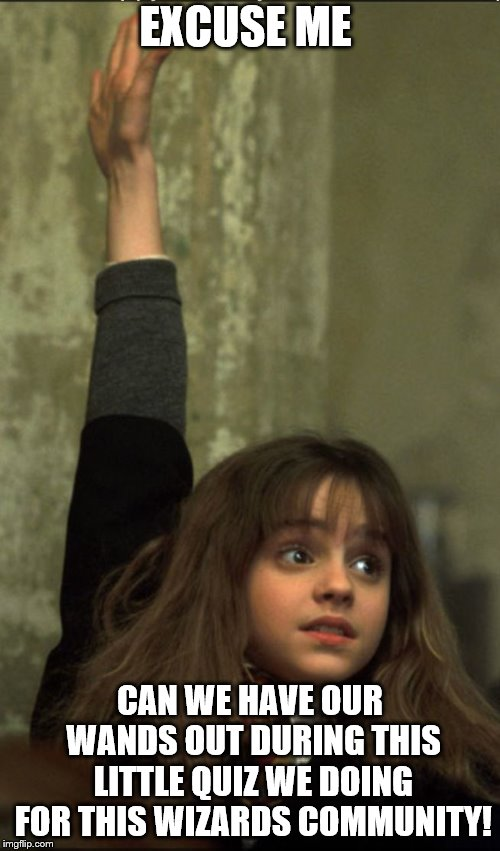 Hermione Granger | EXCUSE ME CAN WE HAVE OUR WANDS OUT DURING THIS LITTLE QUIZ WE DOING FOR THIS WIZARDS COMMUNITY! | image tagged in hermione granger | made w/ Imgflip meme maker