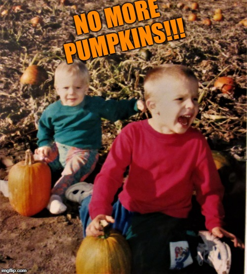 pumpkin patch fail | NO MORE PUMPKINS!!! | image tagged in pumpkin patch fail | made w/ Imgflip meme maker