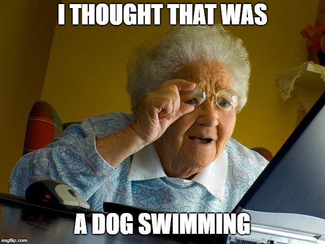 Grandma Finds The Internet Meme | I THOUGHT THAT WAS A DOG SWIMMING | image tagged in memes,grandma finds the internet | made w/ Imgflip meme maker