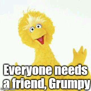big bird 1 | Everyone needs a friend, Grumpy | image tagged in big bird 1 | made w/ Imgflip meme maker