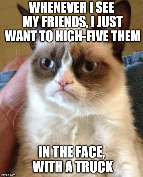 Grumpy Cat Meme | WHENEVER I SEE MY FRIENDS, I JUST WANT TO HIGH-FIVE THEM IN THE FACE, WITH A TRUCK | image tagged in memes,grumpy cat | made w/ Imgflip meme maker