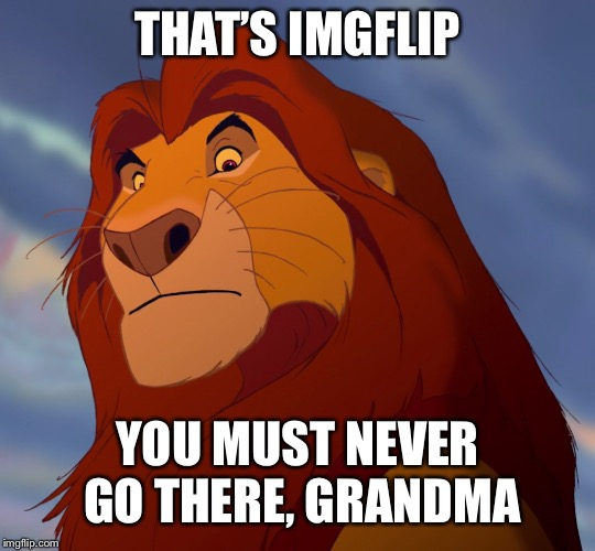 THAT'S IMGFLIP YOU MUST NEVER GO THERE, GRANDMA | made w/ Imgflip meme maker