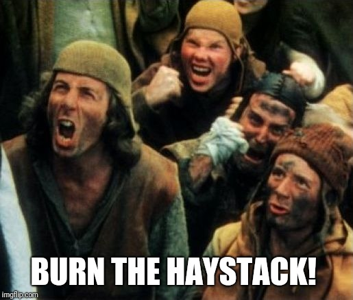 Monty Python Witch | BURN THE HAYSTACK! | image tagged in monty python witch | made w/ Imgflip meme maker