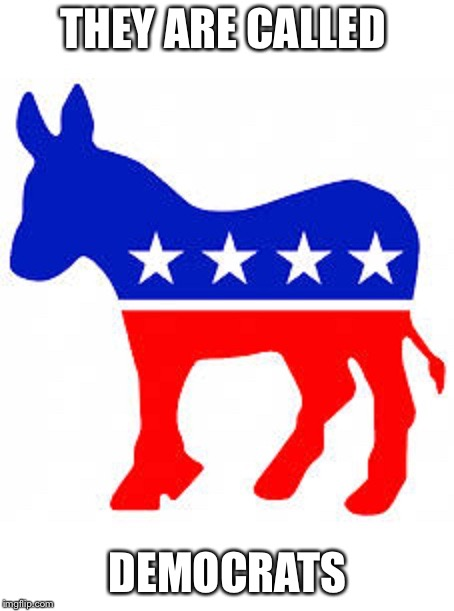 Democrat donkey | THEY ARE CALLED DEMOCRATS | image tagged in democrat donkey | made w/ Imgflip meme maker