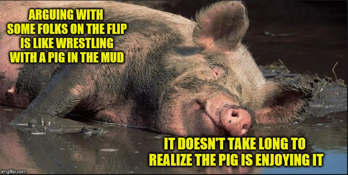 Pigs or Trolls - same-same | ARGUING WITH SOME FOLKS ON THE FLIP IS LIKE WRESTLING WITH A PIG IN THE MUD IT DOESN'T TAKE LONG TO REALIZE THE PIG IS ENJOYING IT | image tagged in trolls,pigs,memes | made w/ Imgflip meme maker