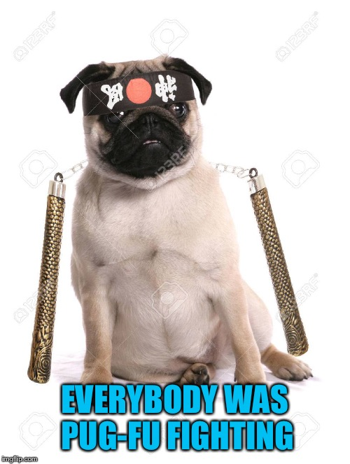 EVERYBODY WAS PUG-FU FIGHTING | made w/ Imgflip meme maker