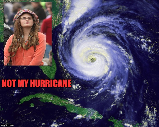 Problem solved - evac unnecessay, protest the storm | NOT MY HURRICANE | image tagged in hurricane,liberal,protest,denial | made w/ Imgflip meme maker