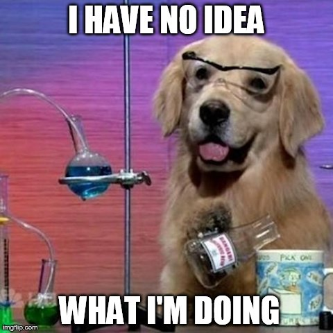 I Have No Idea What I Am Doing Dog | I HAVE NO IDEA  WHAT I'M DOING | image tagged in i have no idea what i am doing,memes,dogs,funny | made w/ Imgflip meme maker