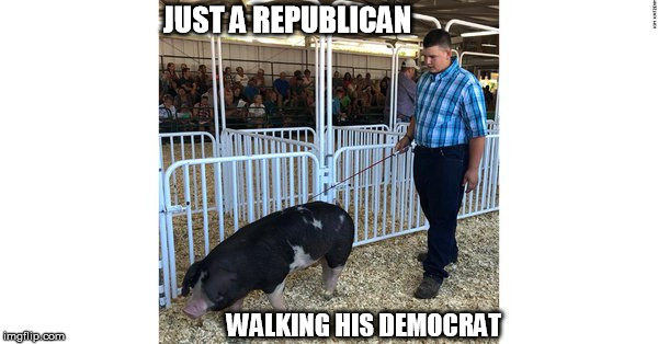 JUST A REPUBLICAN WALKING HIS DEMOCRAT | image tagged in democrats | made w/ Imgflip meme maker