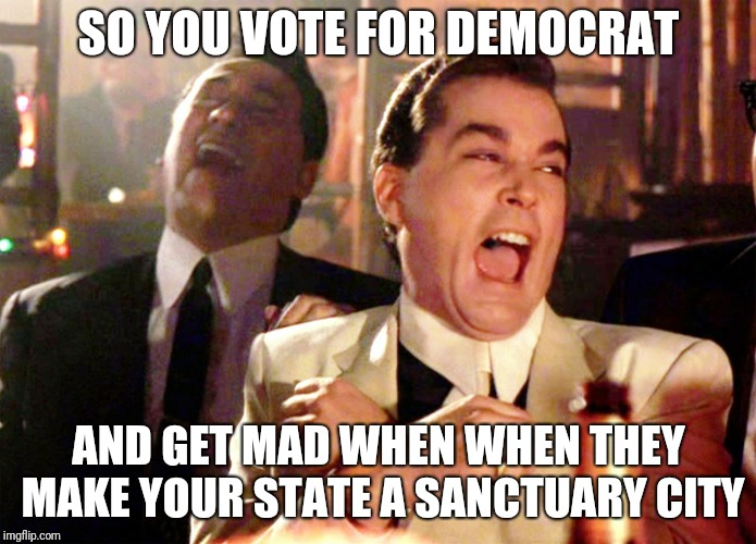 Good Fellas Hilarious Meme | SO YOU VOTE FOR DEMOCRAT AND GET MAD WHEN WHEN THEY MAKE YOUR STATE A SANCTUARY CITY | image tagged in memes,good fellas hilarious | made w/ Imgflip meme maker