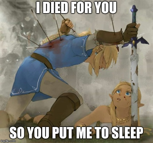Link and zelda | I DIED FOR YOU SO YOU PUT ME TO SLEEP | image tagged in link and zelda | made w/ Imgflip meme maker