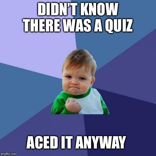 Success Kid Meme | DIDN'T KNOW THERE WAS A QUIZ ACED IT ANYWAY | image tagged in memes,success kid | made w/ Imgflip meme maker