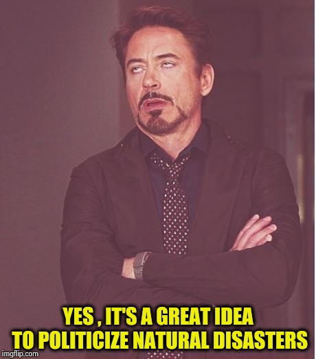 Face You Make Robert Downey Jr Meme | YES , IT'S A GREAT IDEA TO POLITICIZE NATURAL DISASTERS | image tagged in memes,face you make robert downey jr | made w/ Imgflip meme maker