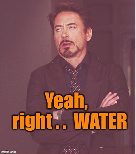Face You Make Robert Downey Jr Meme | Yeah,  right . .  WATER | image tagged in memes,face you make robert downey jr | made w/ Imgflip meme maker