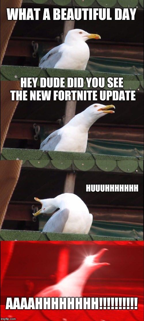 Inhaling Seagull Meme | WHAT A BEAUTIFUL DAY HEY DUDE DID YOU SEE THE NEW FORTNITE UPDATE HUUUHHHHHHH AAAAHHHHHHHH!!!!!!!!!! | image tagged in memes,inhaling seagull | made w/ Imgflip meme maker