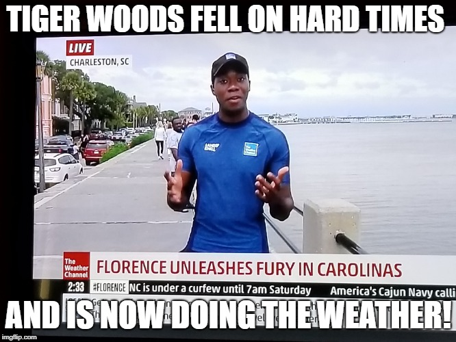 Tiger Woods | TIGER WOODS FELL ON HARD TIMES AND IS NOW DOING THE WEATHER! | image tagged in tiger woods,florence | made w/ Imgflip meme maker