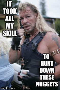 IT TOOK ALL MY SKILL TO HUNT DOWN THESE NUGGETS | image tagged in dog the bounty hunter | made w/ Imgflip meme maker