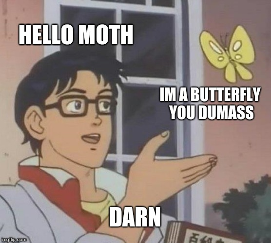 Is This A Pigeon Meme | HELLO MOTH IM A BUTTERFLY YOU DUMASS DARN | image tagged in memes,is this a pigeon | made w/ Imgflip meme maker