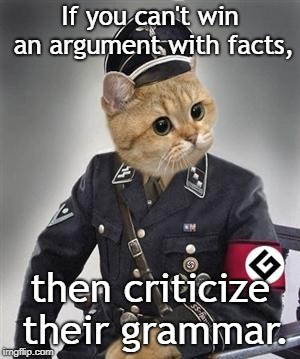 Is this a new debate tactic? |  If you can't win an argument with facts, then criticize their grammar. | image tagged in grammar nazi cat,debate,facts | made w/ Imgflip meme maker