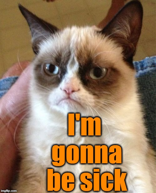 Grumpy Cat Meme | I'm gonna be sick | image tagged in memes,grumpy cat | made w/ Imgflip meme maker