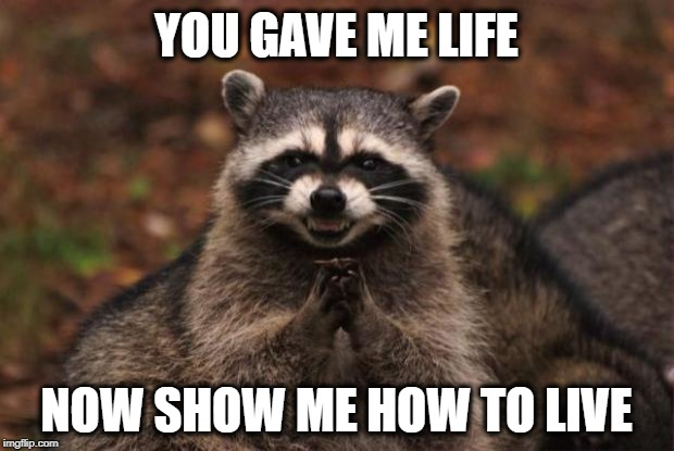 Are you raising audio slaves?  | YOU GAVE ME LIFE NOW SHOW ME HOW TO LIVE | image tagged in evil genius racoon,memes,mother,abortion,human rights | made w/ Imgflip meme maker