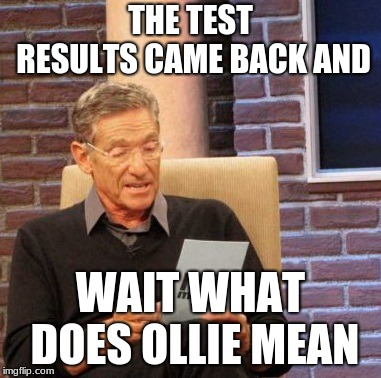 Maury Lie Detector Meme | THE TEST RESULTS CAME BACK AND WAIT WHAT DOES OLLIE MEAN | image tagged in memes,maury lie detector | made w/ Imgflip meme maker