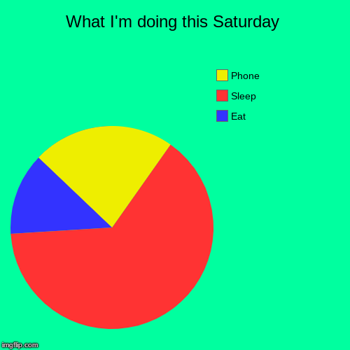 What I'm doing this Saturday | Eat, Sleep, Phone | image tagged in funny,pie charts | made w/ Imgflip chart maker