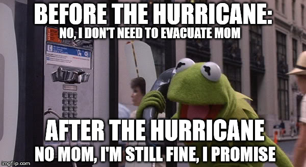 Kermit Phone | BEFORE THE HURRICANE: NO, I DON'T NEED TO EVACUATE MOM AFTER THE HURRICANE NO MOM, I'M STILL FINE, I PROMISE | image tagged in kermit phone | made w/ Imgflip meme maker