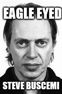 Steve Buscemi | EAGLE EYED STEVE BUSCEMI | image tagged in steve buscemi | made w/ Imgflip meme maker